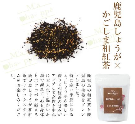 鹿児島しょうが×かごしま和紅茶(ティーバッグ)