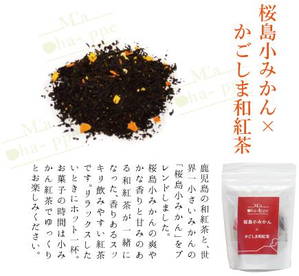 桜島小みかん×かごしま和紅茶(ティーバッグ)